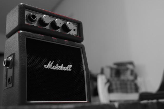 ギター ベース プレゼント アンプ