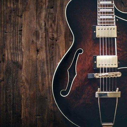 ギター ボディ 材質