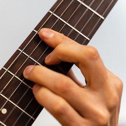 ギター 指板 木材