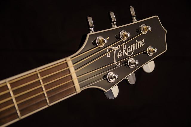 ギター ナット 種類